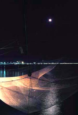 La luna al lucernone - giugno 1985