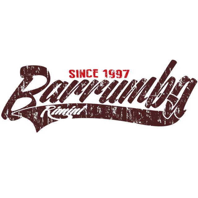 Logo Barrumba