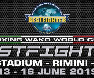 Kickboxing Wako World Cup