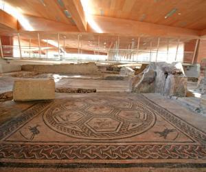 particolare del mosaico della domus del chirurgo